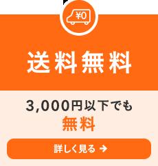 [送料無料]