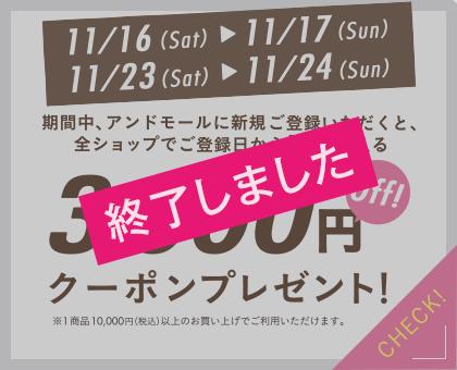3,000円offクーポンプレゼント