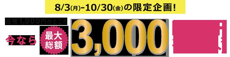 通常1,000円のところ 今なら最大総額3,000円OFFクーポンプレゼント! 8/3 ~ 10/30までの限定企画!
