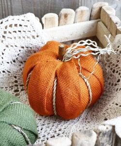 ジュートかぼちゃ