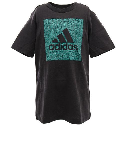 アディダス(adidas)ボーイズ マストハブ バッジ オブ スポーツ BOX 半袖Tシャツ GUW23-FM4493 オンライン価格
