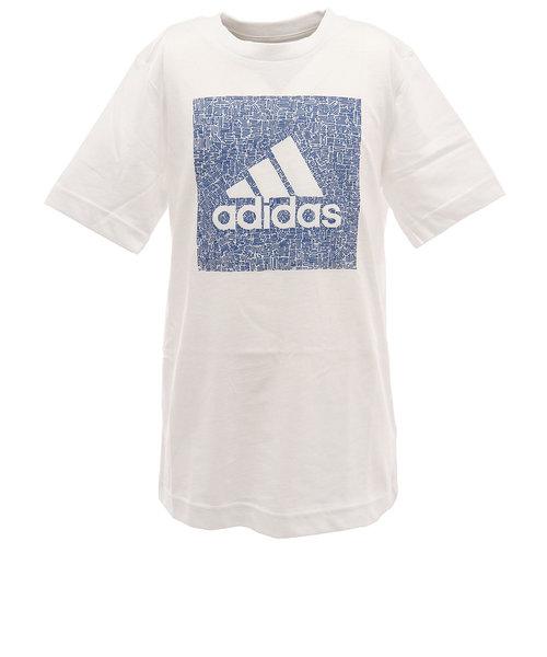 アディダス(adidas)ボーイズ マストハブ バッジ オブ スポーツ BOX 半袖Tシャツ GUW23-FM4492 オンライン価格