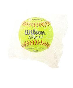 ウイルソン(WILLSON)革ソフトボール練習球 WTA9611J