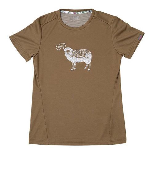 フェニックス(PHENIX)半袖Tシャツ SHEEP PH922TS63 BR