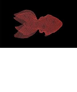 【受注生産品】Fish フィッシュ(M)