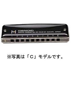 HAMMOND HA-20 B スズキ 10穴ハーモニカ