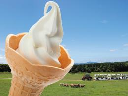 おすすめメニュー ソフトクリーム