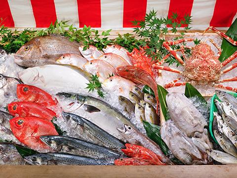 マキハラ魚市場