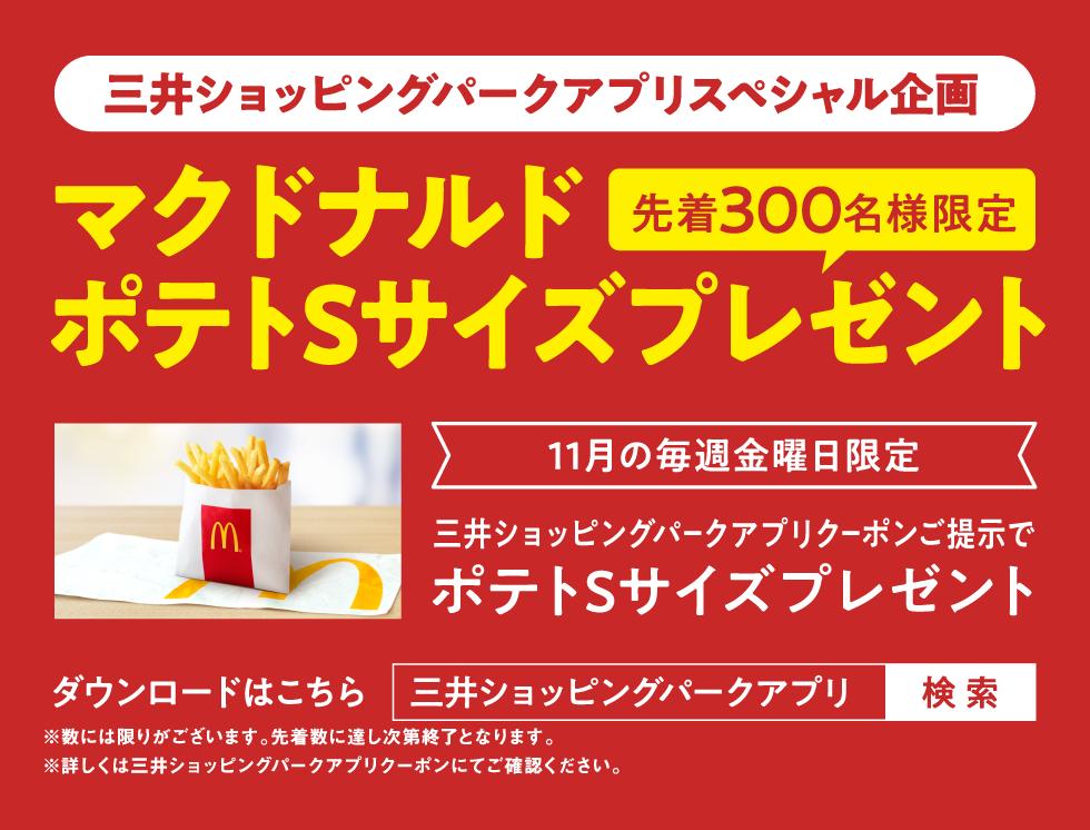 McDonald's potato small size present