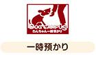DOG CAMPUS doggy temporary custody
