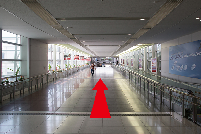 4.Continue straight and head towards the access plaza.