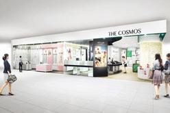 THE COSMOS (the cosmos)