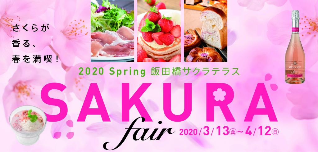 Cherry blossoms fair