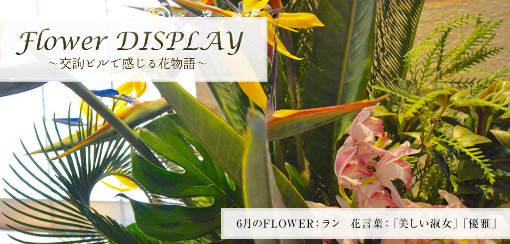 Flower story ... to feel to be Flower DISPLAY - Kojun Building DINING & STORES