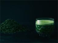 IPPUKU&MATCHA_抹茶